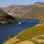 Weinberg Douro ohne Tele: Achten Sie auf das Schiff