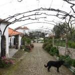 klein_266 Quinta Santa Cruz_183