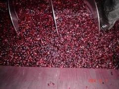 Rotwein aus Dao